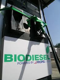 Bio diesel is eco-friendly but is less advisable for motorists.