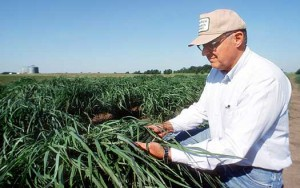 One of the many benefits of ethanol fuel is providing farmers with better profits.